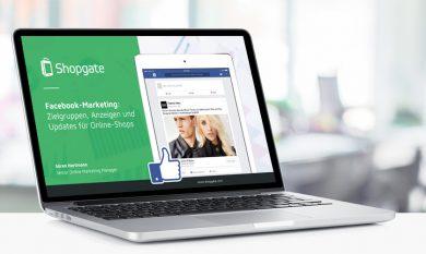 Interface: Facebook-Marketing