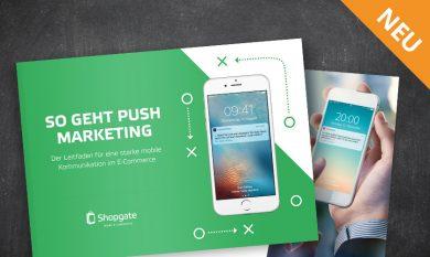 Interface: Leitfaden Push-Marketing