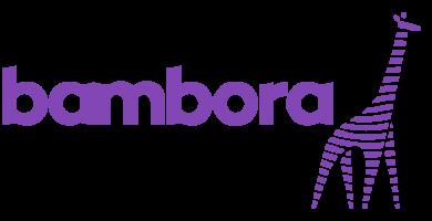 Interface: Bambora