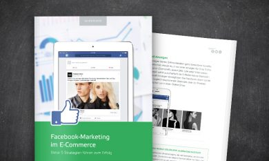 Interface: Facebook-Marketing im E-Commerce