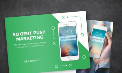 Interface: Leitfaden Push-Marketing